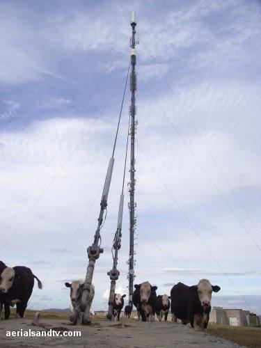 Ridge Hill transmitter & the bullocks 500H L10 35kB